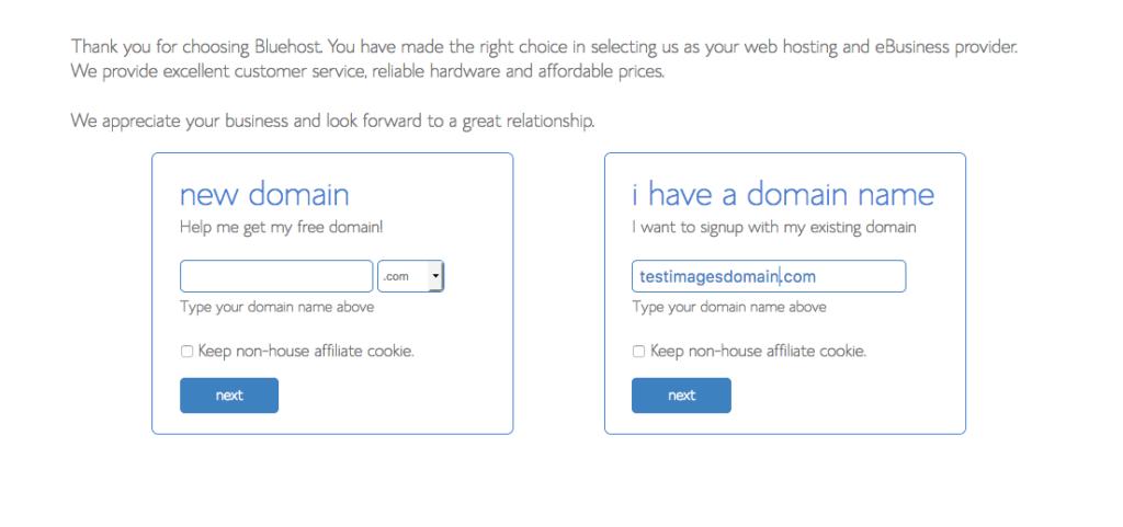 Choose a Domain Screenshot