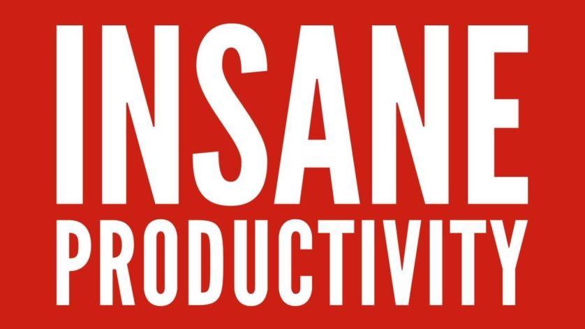 insane productivity review