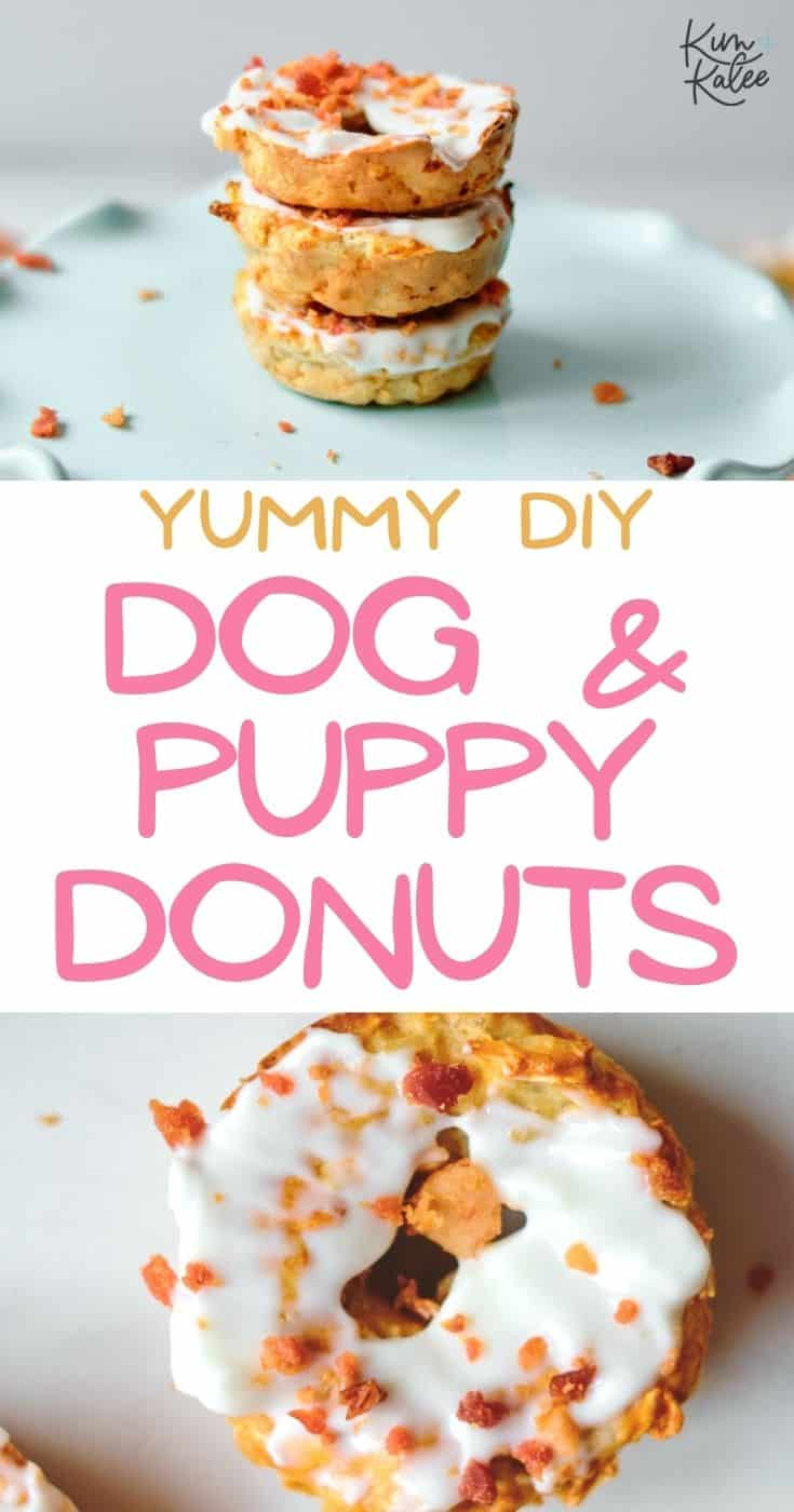 cute and easy dog donuts