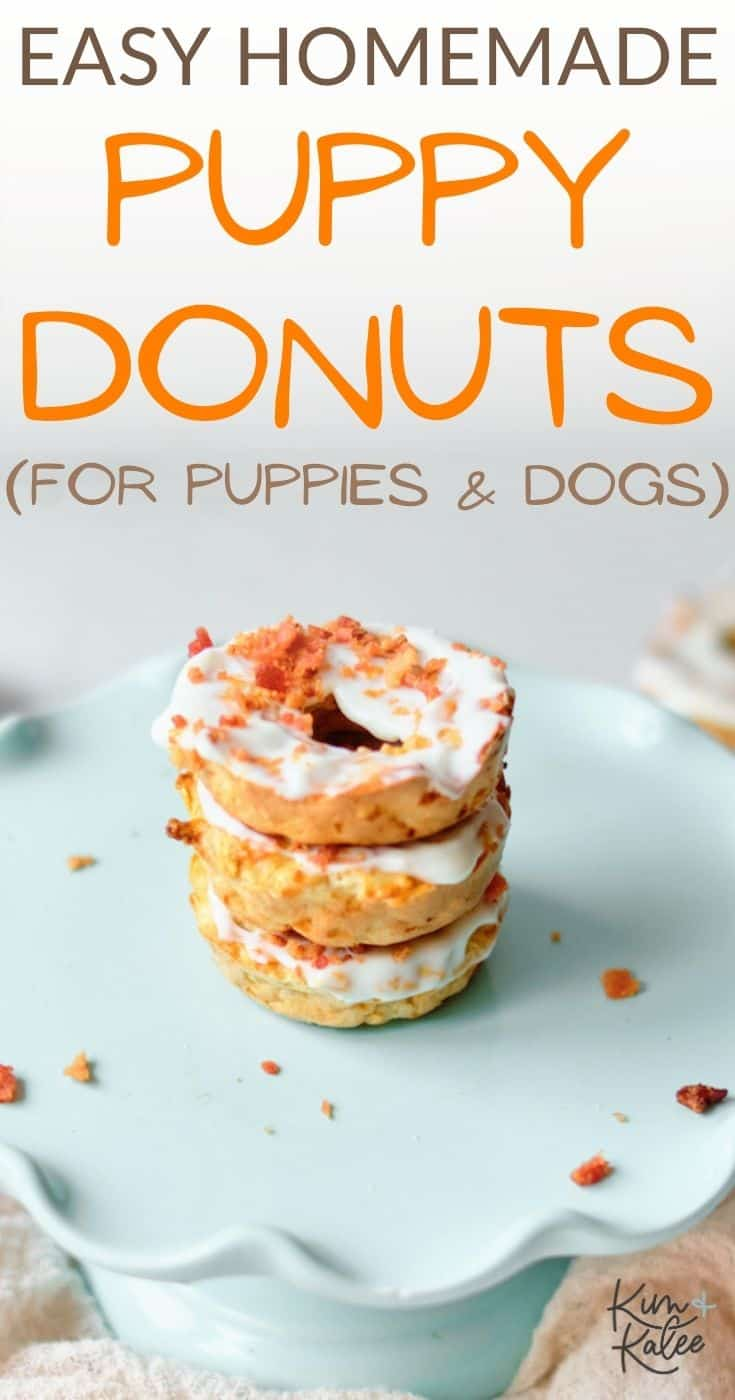 homemade puppy donuts